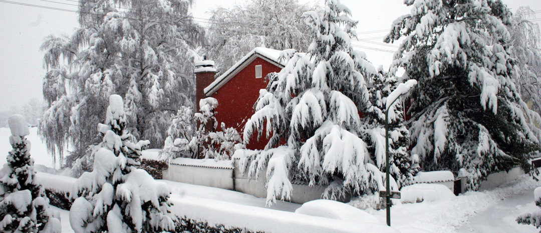SG #112: Winter